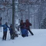 Ritual de salvare a copacilor